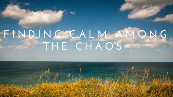 Finding Calmness among the Chaos!